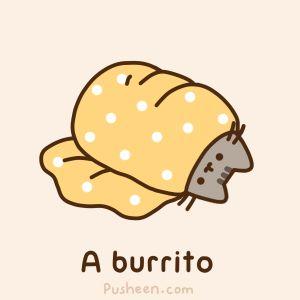 A burrito, text, Pusheen, gif; Pusheen