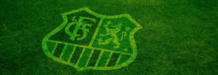 Aktuell | 1. FC Saarbrücken  1. FC Saarbrücken - Schalke 04  Ludwigspark-Stadion 19.08.2012, 16:00