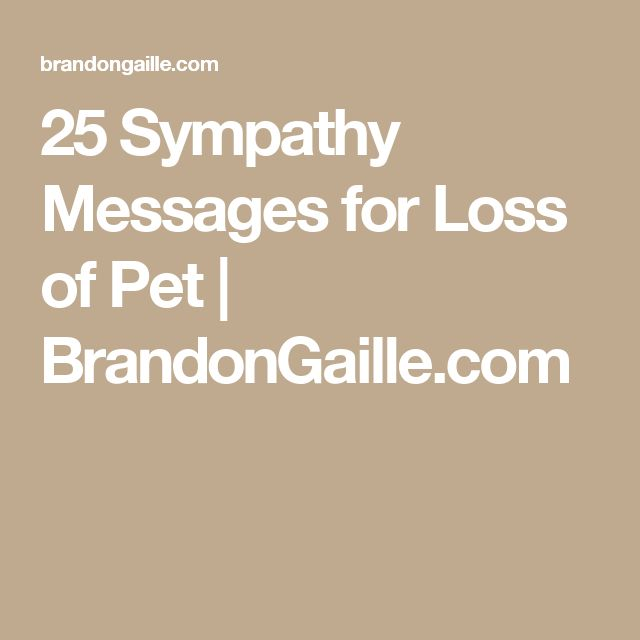 25 Sympathy Messages for Loss of Pet | BrandonGaille.com
