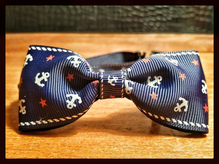 The Blue Sailor, available at nobbypets.com This beautiful Bow Tie is ideal for cats and small dogs! #cute #cat #dog