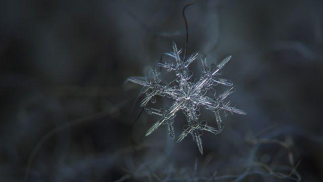 Snowflake ultra HD wallpaper: Rigel