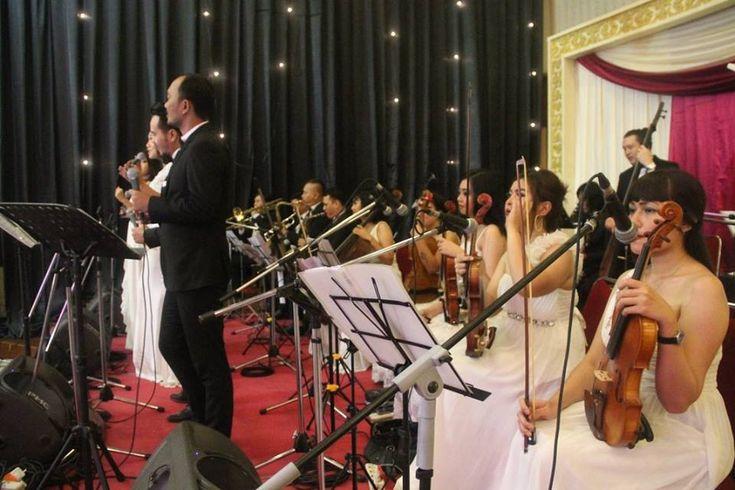 Foto hiburan (musik) pernikahan oleh Jova Musique