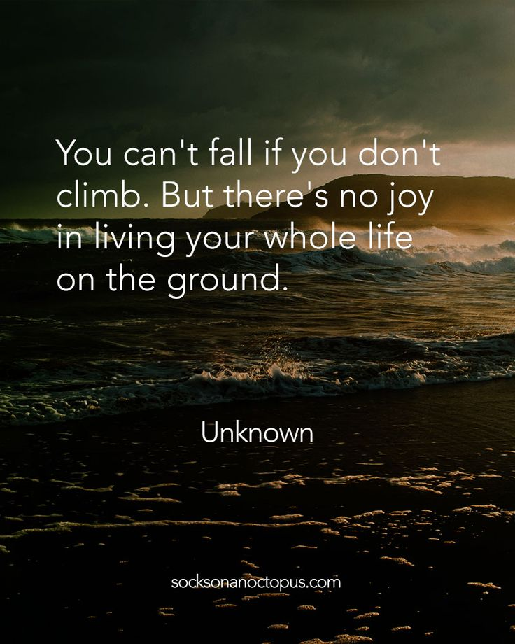 Quote Of The Day: April 20, 2015 - You can't fall if you don't climb. But there's no joy in living your whole life on the ground. — Unknown - #quote #quoteoftheday #quotes #qotd