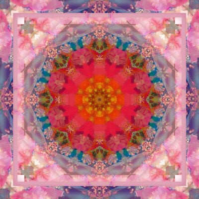 Poeny Mandala No 6 Photography by ALAYA GADEH