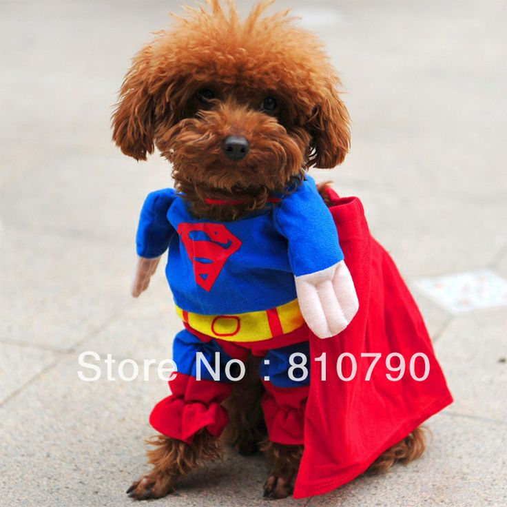 delicol cute superman pet costume superhero dog cat check this awesome product by going to the link at the image