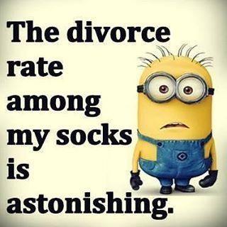 The Divorce Among My Socks Is Astonishing                                                                                                                                                     More