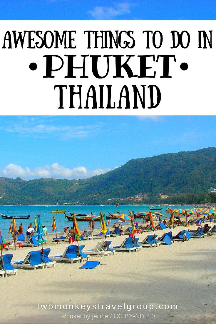 Awesome Things To Do in Phuket, Thailand The baby elephant squealed and made a grab for the bananas in my hand. She shoveled them into her mouth and gulped them down. Then it was my turn to squeal in surprise, as her trunk searched my body for more. Ready