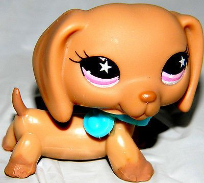 196 best lps images on Pinterest Littlest pet shops, Toys and Cat - best of coloring pages of littlest pet shop dogs
