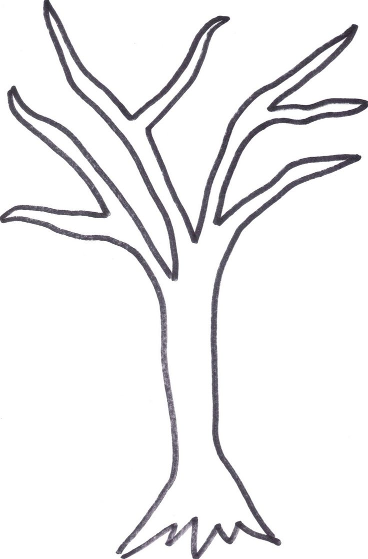printable tree trunk here is the tree outline if anyone wants to cut it out - Birch Tree Branches Coloring Pages