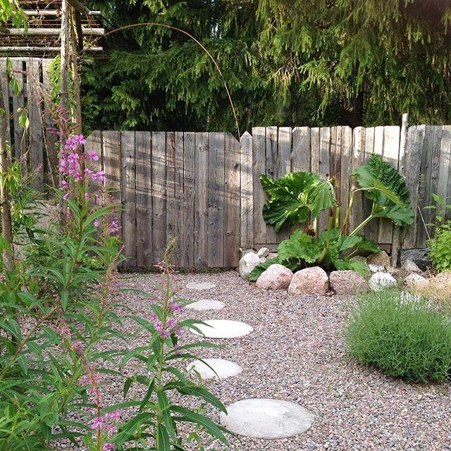 Köksträdgården med portal till trädgårdens guld; komposten och hönsgödslet! Foto: Erika Åberg #minträdgård #mygarden #köksträdgård #erikasträdgård