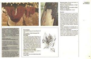 """TINGIMENTO NATURAL & CORANTES NATURAIS   """"... A Tecelagem Artesanal por Rodrigo *O Tecelão!... """""""