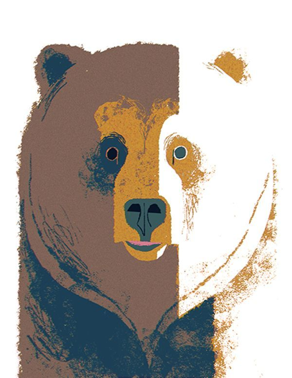 Brave the Woods Bear Illustration