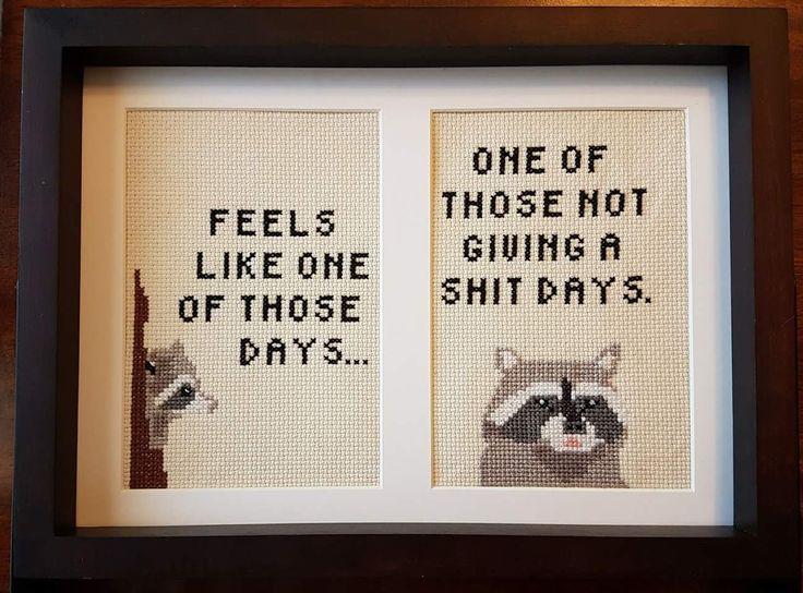 "Raccoon subversive cross stitch. ""Feels like one of those days. One of those not giving a shit days."""