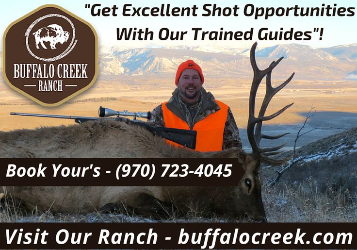 One of the largest and remote ranches in Colorado is your home base for some of the best deer and elk hunting opportunities in Colorado. Our elk hunting packages are tailored to fit your hunting goals. To go on the hunting trip of a lifetime call us at - (970) 723-4045.
