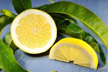 Angeschnittene Zitrone