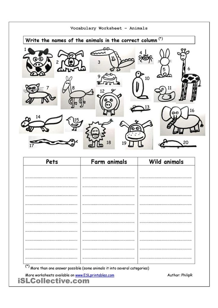 Worksheets With Animals On It : Best images about animals gor on pinterest the park