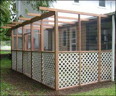 outdoor cat pen - a catio. This would also be great as a bird aviary/flight pen, a rabbit enclosure, chicken run, etc. I can picture a beautiful white peacock in this!