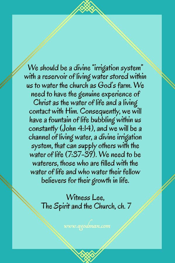 "We should be a divine ""irrigation system"" with a reservoir of living water stored within us to water the church as God's farm. We need to have the genuine experience of Christ as the water of life and a living contact with Him. Consequently, we will have a fountain of life bubbling within us constantly (John 4:14), and we will be a channel of living water, a divine irrigation system, that can supply others with the water of life (7:37-39). We need to be waterers, those who are filled with…"
