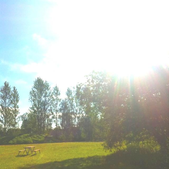 Sun finally!