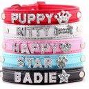 http://www.luxetoutou.com/collier-pour-chien-personnalisable-avec-des-lettres-strass/899-collier-pour-chien-personnalisable-avec-des-lettres-ou-bijoux-en-strass-de-mm10.html