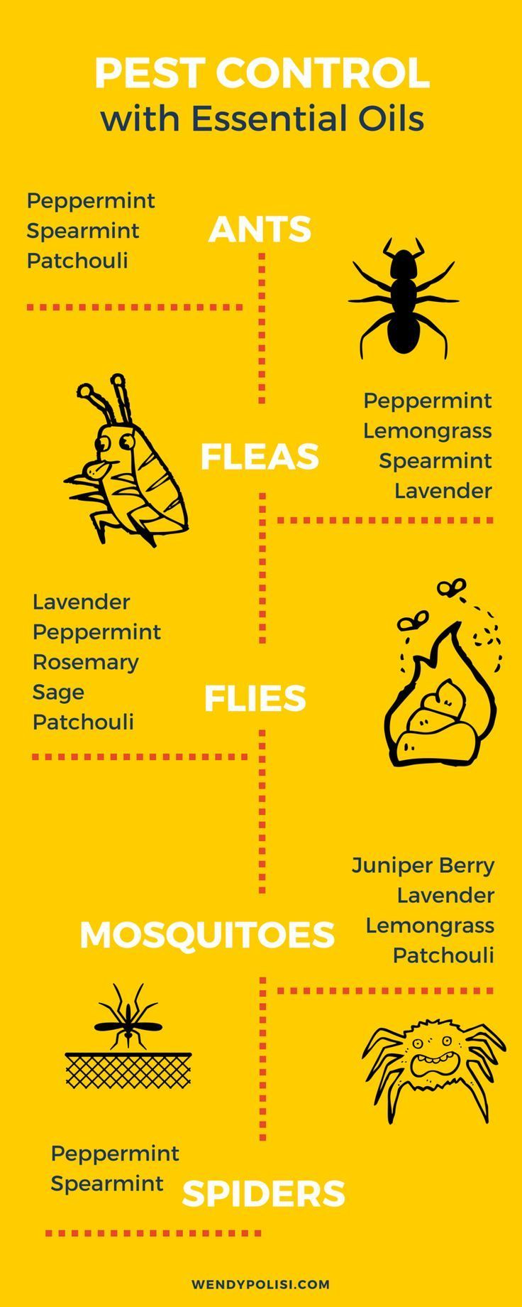 Natural Pest Control with Essential Oils - Just say no to toxic chemicals!  Essential Oils offer a great way to naturally combat pests!  Here is what you need to know!