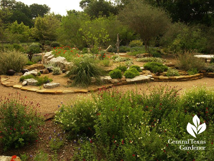 Garden Berm With Native Plants Instead Of Lawn I Like The