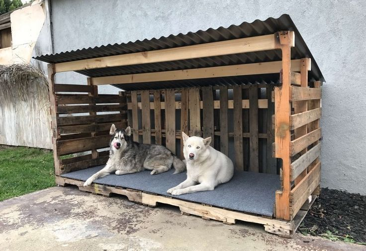 How To Select The Right Material For Your Dog House Grande Niche