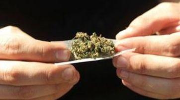 Estudio alerta sobre efecto negativo del acceso legal a la marihuana