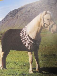 Nicole's Needles: Icelandic Knitting Fever and progress on 1 Sock Blanket