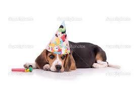 Afbeeldingsresultaat voor gelukkige verjaardag vrouw