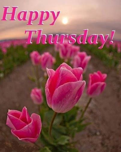 Happy Thursday!...:)