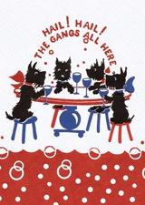 Hail! Hail! The Gangs all Here
