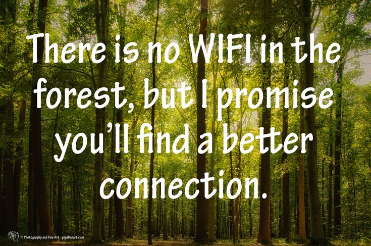 """There is no WIFI in the forest, but I promise you'll find a better connection"". -unknown  To download quotes on Nature and Landscape Photographs visit http://pipafineart.photoshelter.com/gallery/FREE-Life-Love-Quotes-on-Photos/G000014QDX6mYijc"