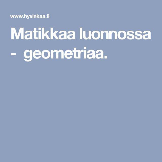 Matikkaa luonnossa - geometriaa.