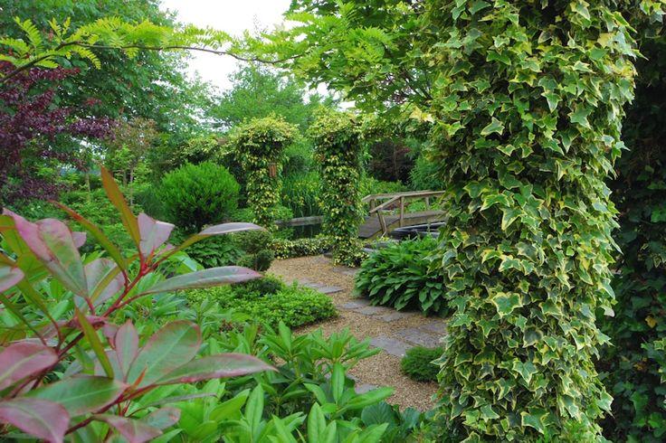 groene tuin met allen bladplanten of wit bloeiende planten