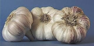 Garlic is an element indispensable energy