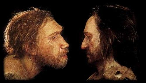 Confrontation: A curious Neanderthal sizes up a Cro Magnon man