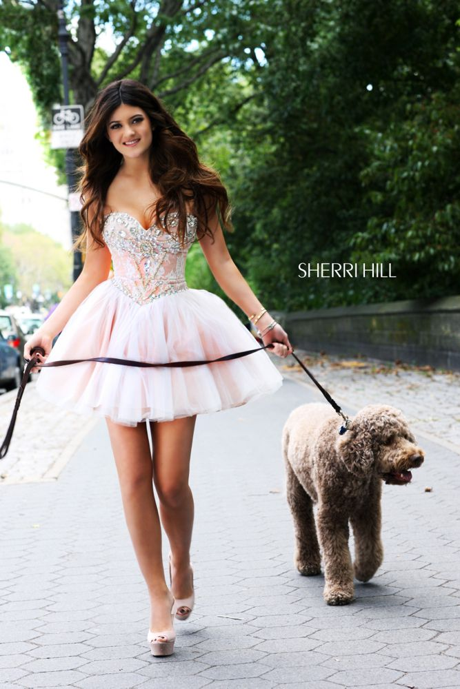 Sherri Hill Spring 2013 Prom Dress 21156 love the dress but the dog is hideous…