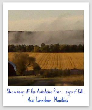 Mist rising off the waters of the #AssiniboineRiver near #lavenham,Manitoba a magical sight to see the wonder of fall
