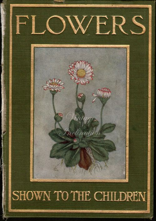 Vintage Flower Book Cover : Best images about vintage book covers on pinterest