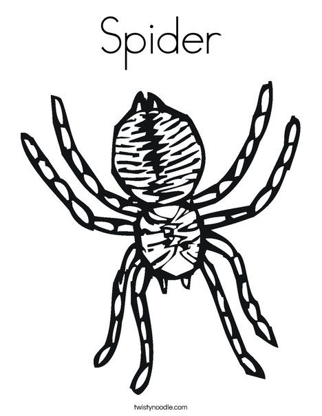 30 best spinnekop images on Pinterest Stock photos Spider and