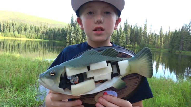 Cutting Open a Big Mouth Billy Bass Singing Fish to Find Out What's Inside