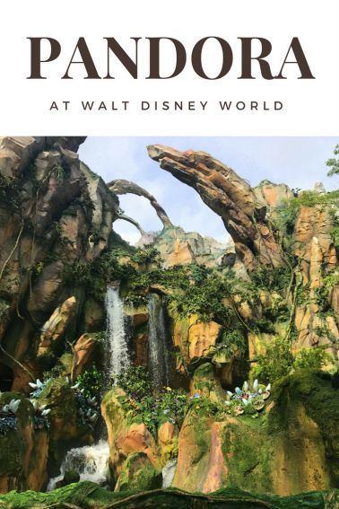 Looking for the best thing to do in Pandora Disney's newest land in Disney Animal Kingdom? We've got the top ten things you can't miss in this Avatar-themed wonderland. via @trekaroo