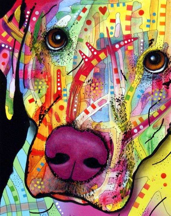 dean russo art #dog #color