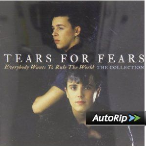 Tears For Fears - Everybody Wants To Rule The World: The Collection  #christmas #gift #ideas #present #stocking #santa #music #records