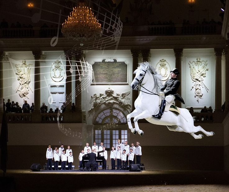A Tribute to Vienna, is the amazing performance between with The Spanish Riding School of Vienna and the World Famous Vienna Boys' Choir, which has been wowing audiences in Vienna