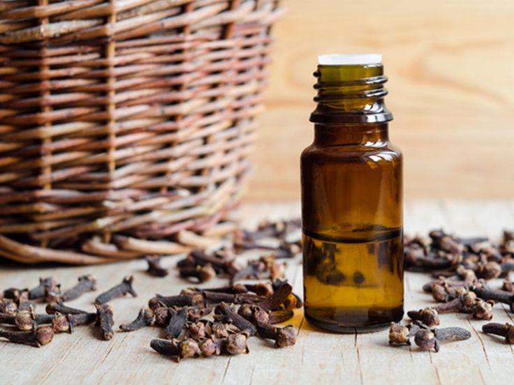 ULEIUL esenţial de CUIŞOARE: cum îl folosim şi la ce ne ajută - Top Remedii Naturiste