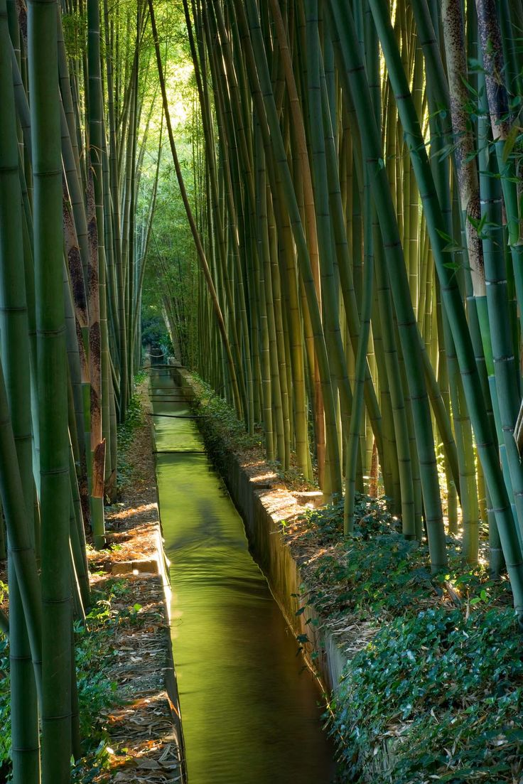 die 129 besten bilder zu inspirations - water features auf, Gartengerate ideen