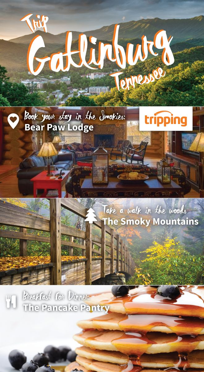 Gatlinburg, Tennessee is a great budget-friendly destination for families. We recommend rounding up your relations and taking them to a beautiful cabin with all the amenities from Tripping.com. Get in some hiking and exploring in the Smoky Mountains, before heading back into town for a long stack of pancakes at the famous Pancake Pantry. Save time and money by finding your perfect cabin rental at Tripping.com