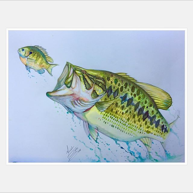 New largemouth bass using watercolors what do you guys for Bass fish painting